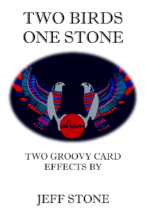 Two Birds One Stone - Deluxe Version